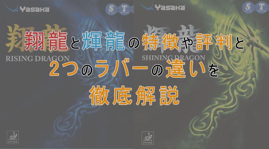 翔龍と輝龍の特徴や評判、2つの違い